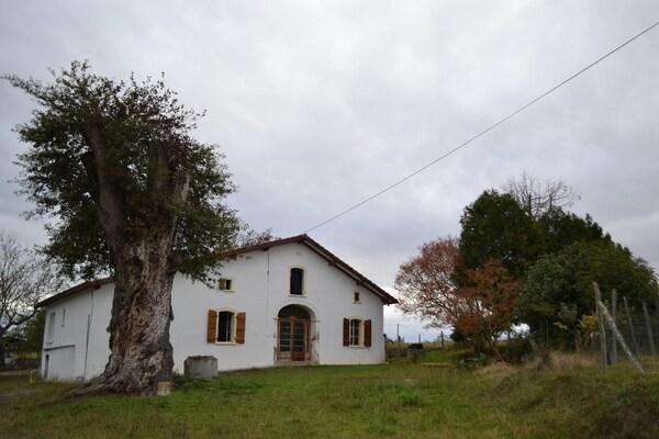 Maison individuelle POUILLON