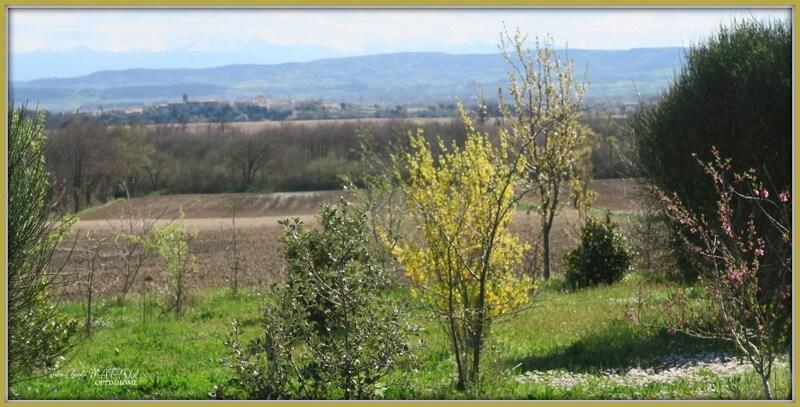 Corps de ferme de 357  m2 - Castelnaudary (11400)