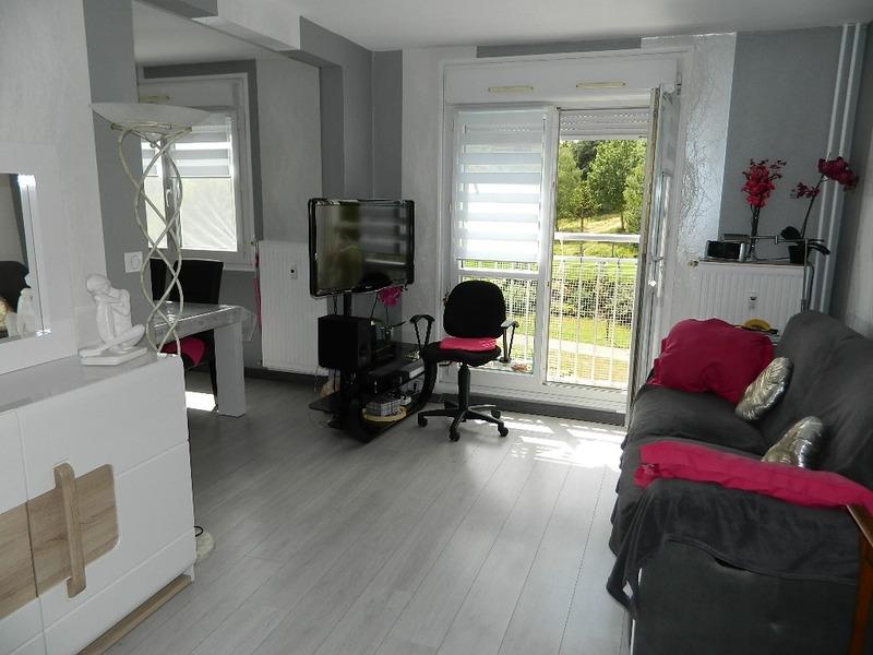 Appartement 1960 de 63  m2 - Vandoeuvre-lès-Nancy (54500)