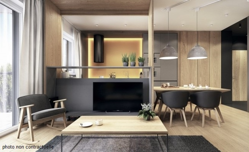 Appartement de 49  m2 - Villeurbanne (69100)