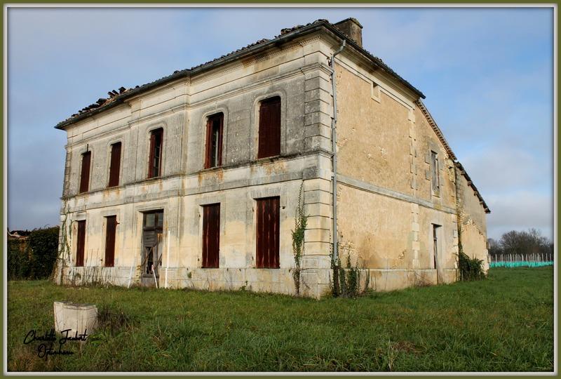 Maison en pierre de 330  m2 - Chevanceaux (17210)