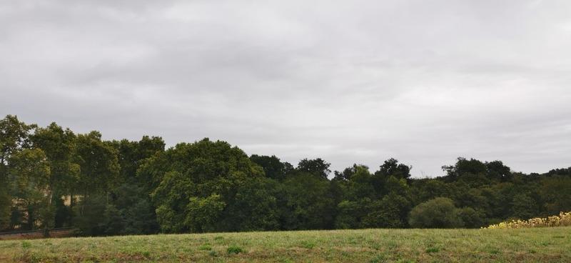 Terrain agricole de   m2 - Labatut (40300)