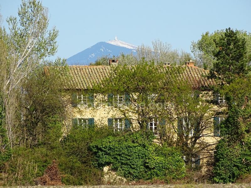 Propriété de 650  m2 - Avignon (84000)