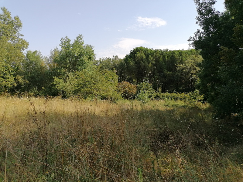 Terrain constructible de   m2 - Bagnols-en-Forêt (83600)