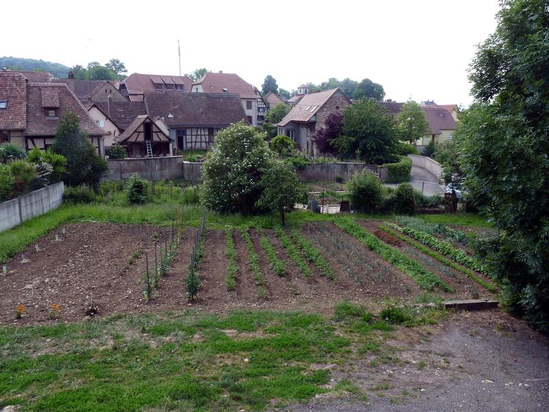 Terrain constructible de   m2 - Scharrachbergheim-Irmstett (67310)