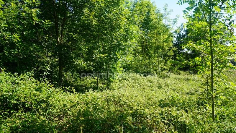 Terrain constructible de   m2 - Saint-Arnoult-des-Bois (28190)