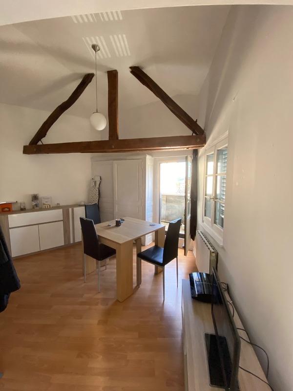 Appartement mezzanine de 70  m2 - Limoges (87000)