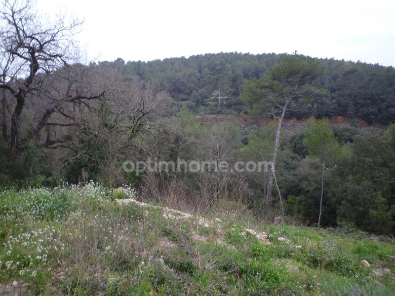 Terrain constructible de   m2 - Mouans-Sartoux (06370)